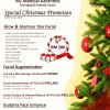 Special Christmas Promotion (until 31Jan2017)